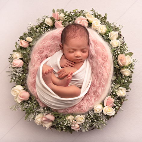 Photograph of a newborn baby girl in a nest of roses by Christchurch newborn baby & family photographer Kirsten Naomi Photography
