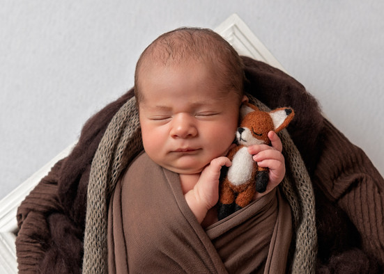 Photograph of a newborn baby boy holding a tiny felted fox by Christchurch newborn baby & family photographer Kirsten Naomi Photography