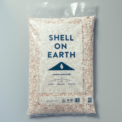 Crushed Whelk Shells