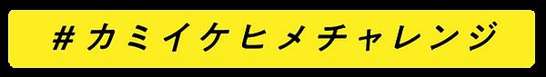 kamiikehime_tag.png
