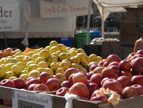 Union Square Market Apples.jpeg