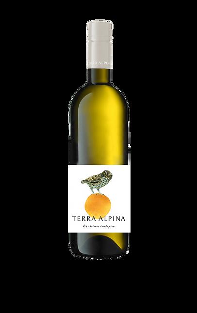 TERRA ALPINA BIANCO Capsula.png