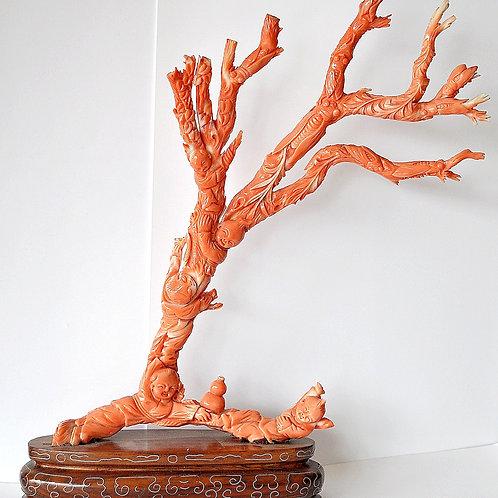 Chine - Corail peau d'ange - Sculpture - Début XXème