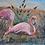 """Thumbnail: Colette Lapierre - HST - """"Flamands roses"""" - Signed - XXth"""