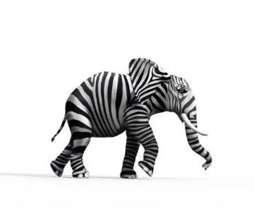 zebraphant.JPG