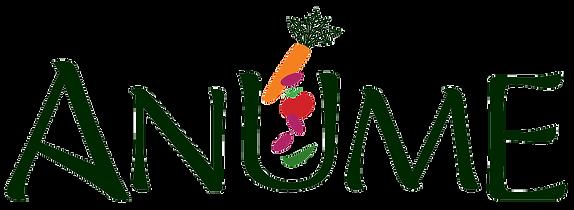 Anume_Logo.png