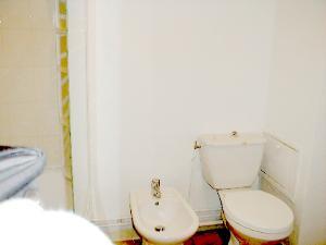 alb4_bathroom_toilet2-300x225jpg