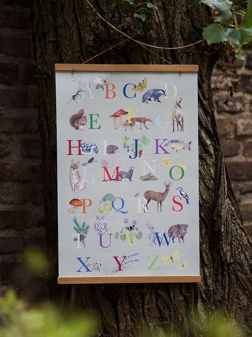 Wald- ABC Plakat