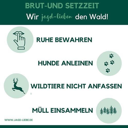 Jagd-Liebe Infografik DIN A4 Brut- und Setzzeit Download