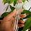 Thumbnail: Propagation Tube 1 inch
