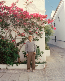 Paco and the Pink Bougainvillea