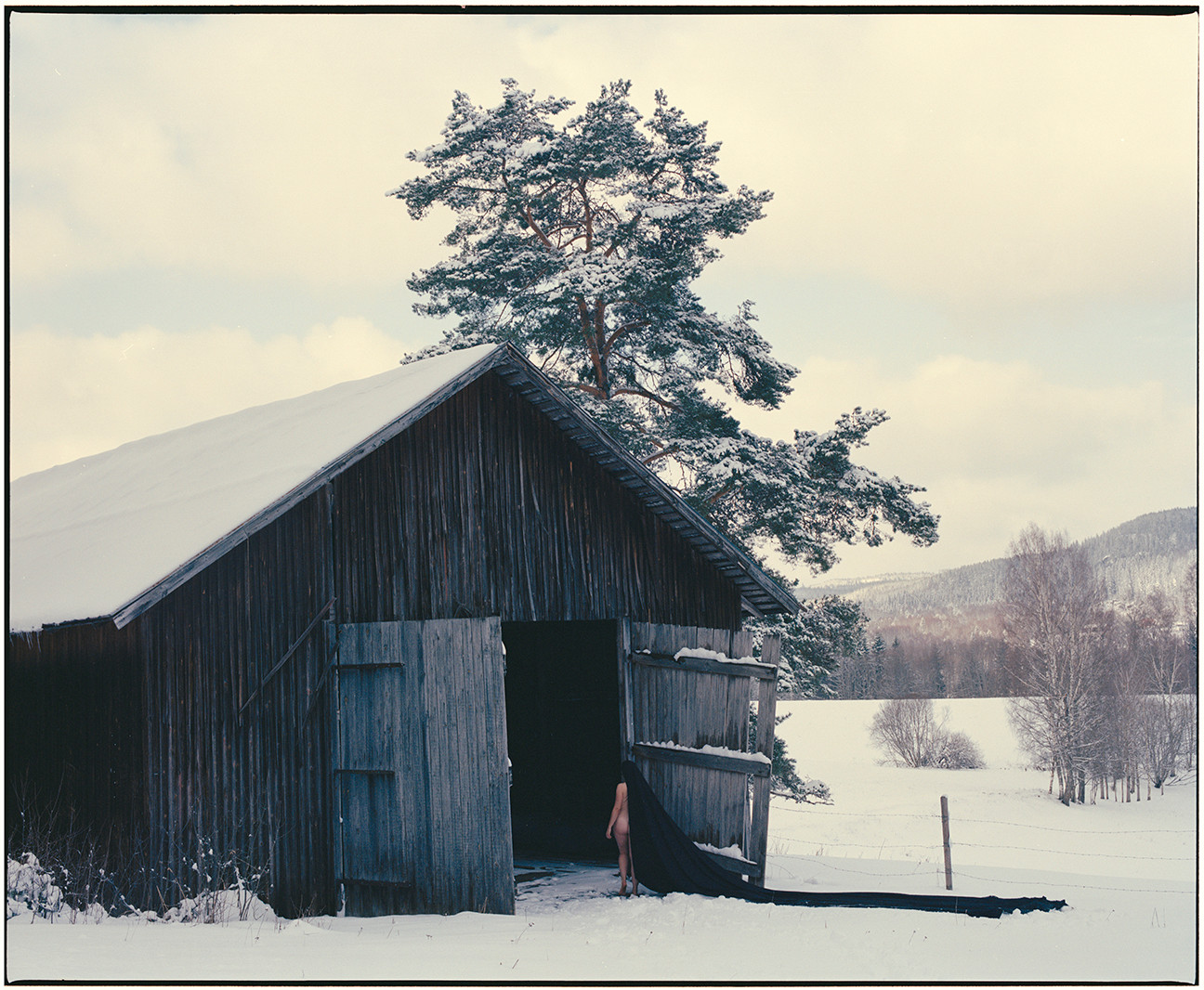 Body and the Barn - 4