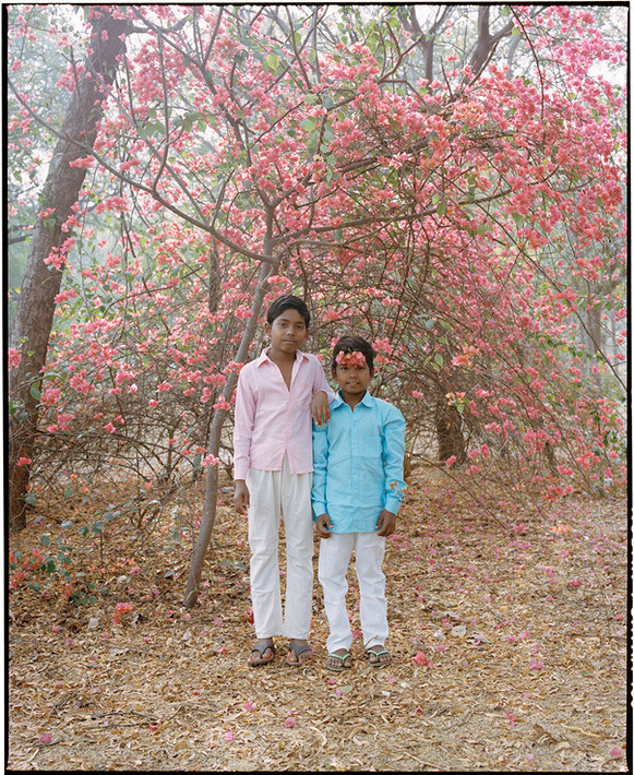 The Flower Brothers. India, 2021.