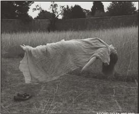 Sleeping in the Fields
