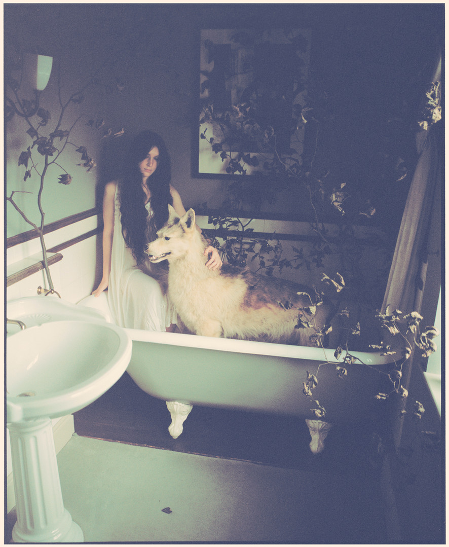 Snow and Wolf in the Bathtub