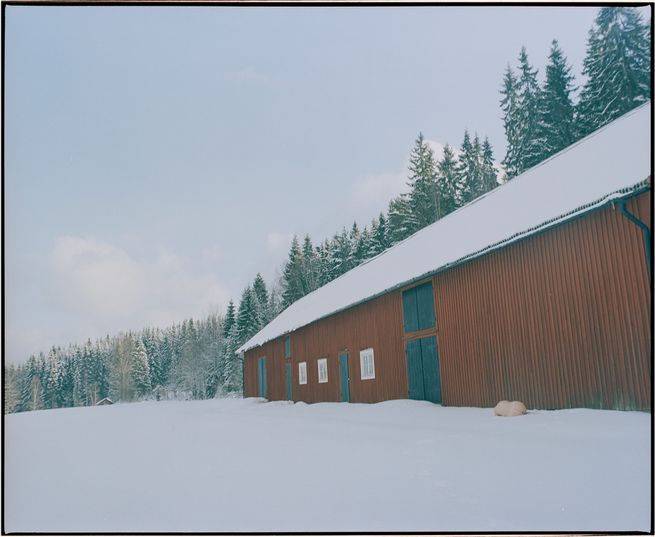 Body and the Barn - 2