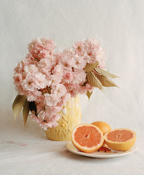 Pink Blossoms and Grapefruit