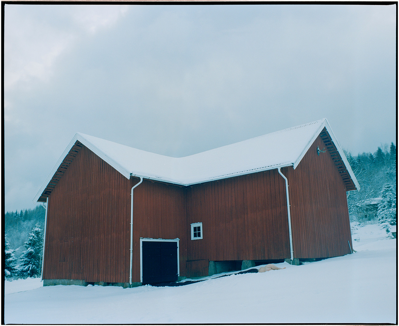Body and the Barn - 3