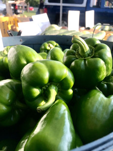 Green peppers galore