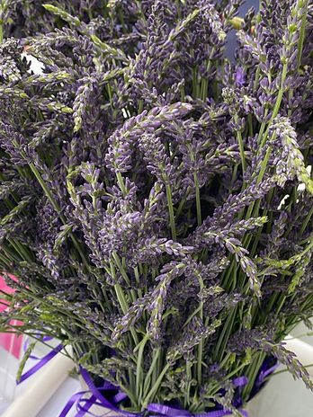 pulaski farmers market lavender
