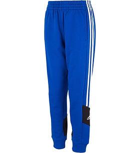 blue addidas pants.jfif