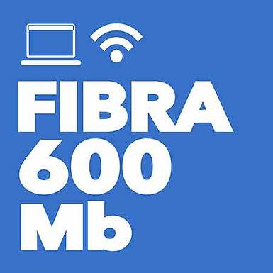 FIBRA 600 Mb Simétrica