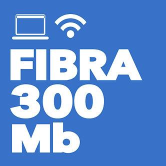 FIBRA 300 Mb simétrica