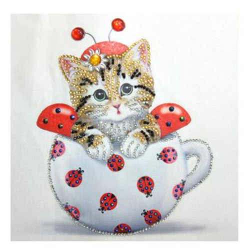 Special Kitten in a cup