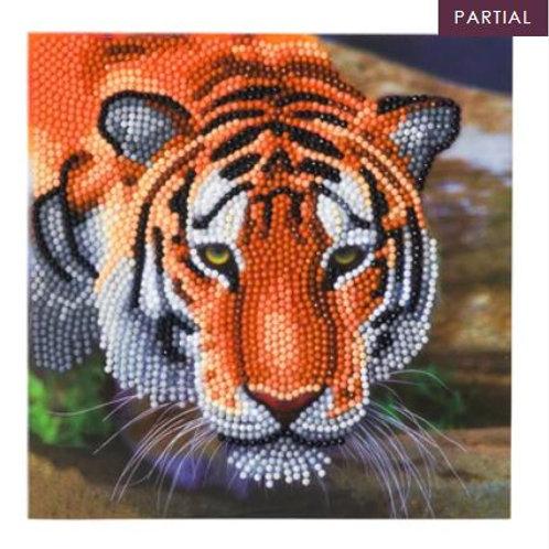 """Tiger"" Crystal Art Card Kit"