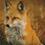 Thumbnail: Fox