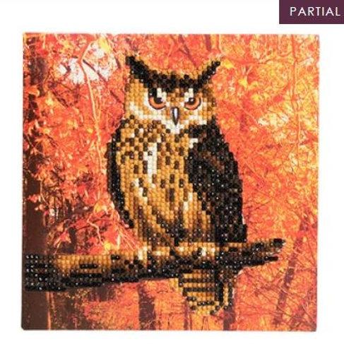 Autumn Owl, 18x18cm Crystal Art Card