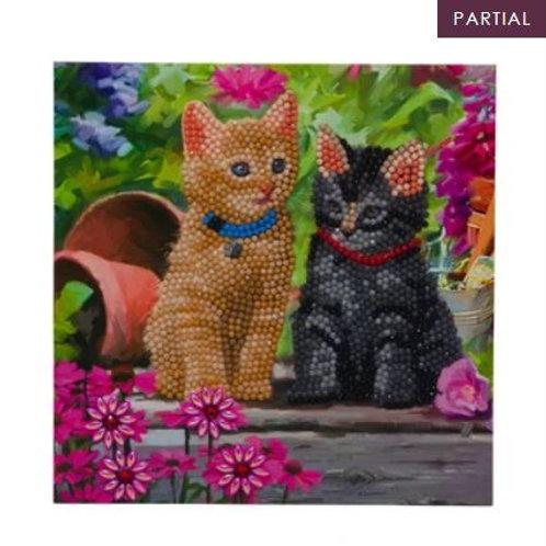 Cat Friends, 18x18cm Crystal Art Card