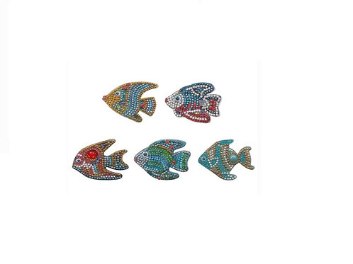 Fish pack of 5