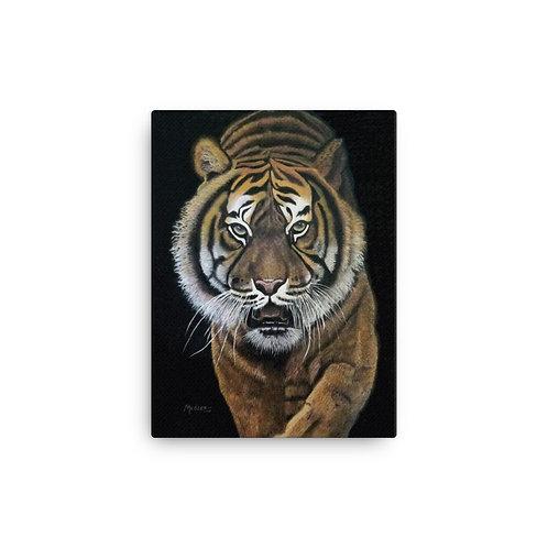 Canvas Print: Prowler