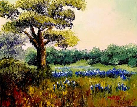 Texas Meadow