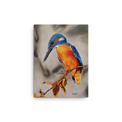 Canvas Print: Common Kingfisher