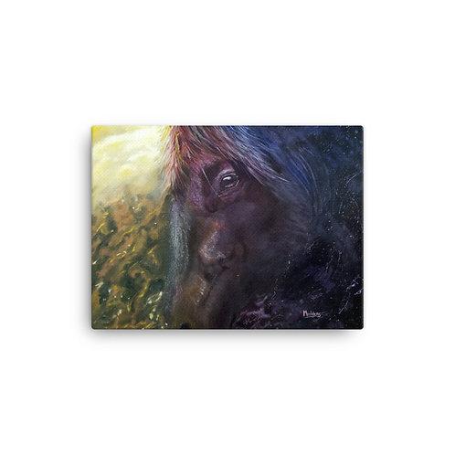 Canvas Print: Horse Nebula