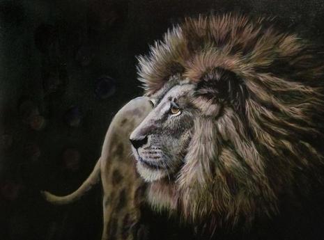 Pride Lord
