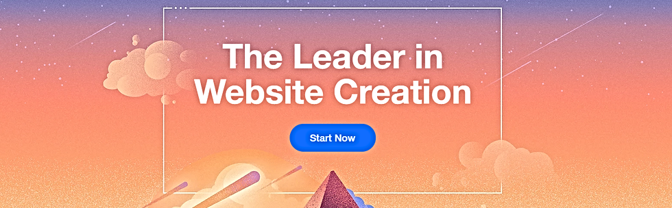 Wix Build Your Own WebSite Quick   Easy.