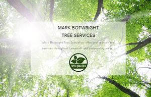 Tree Surgeon Services Lowestoft Suffolk