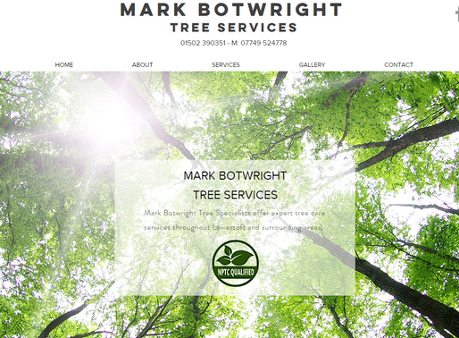 Website Builders/Designers Lowestoft