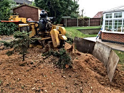 We can remove unsightly tree stumps without any inconvenience. We achieve this by using one of our specialised machines known as a stump grinder.