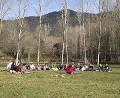 ARIMA GAIA 2010