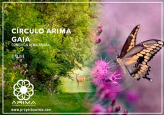 CIRCULO-ARIMA-GAIA.jpg