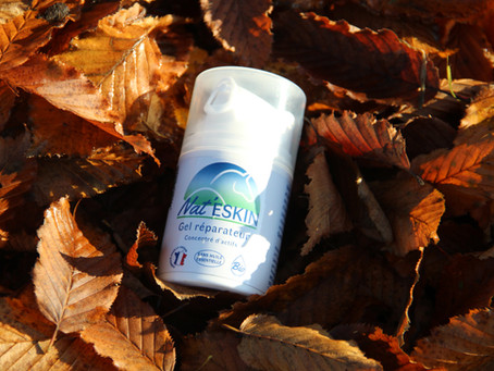 L'innovation Prébiotique naturelle de Nateskin