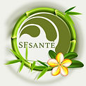 SF Santé logo 2021.jpg