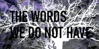 the words image.png
