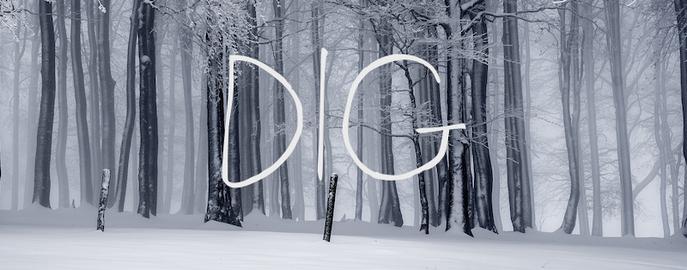 DIG_art.png