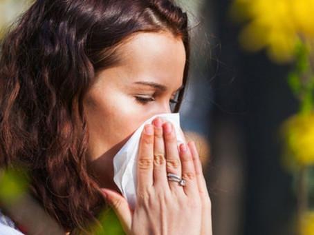 Prevención y tratamiento para las alergias respiratorias