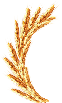 Логан зерно B&b La Locanda Cistercense